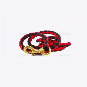 Color Pets Leash